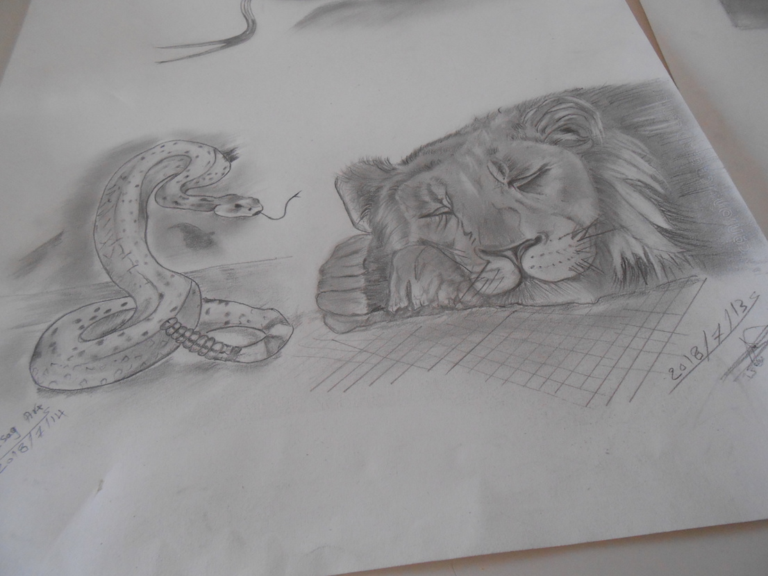 Yasser serpent et lion