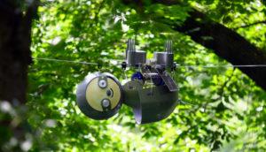 SlothBot, véritable allié de la conservation de la faune !
